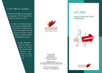 Flyer ACT PRO
